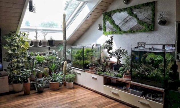 Ide Taman Dalam Rumah